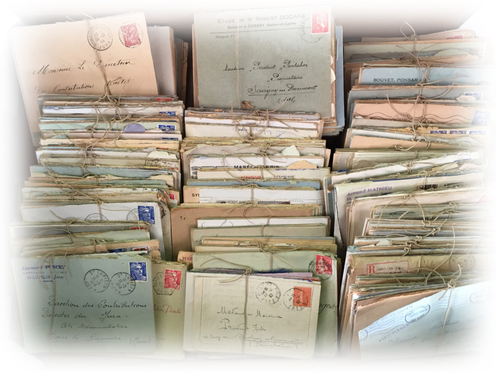 Scribo - Scrittura Bolognese - newsletter